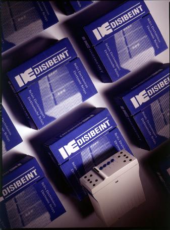 disibeint-04